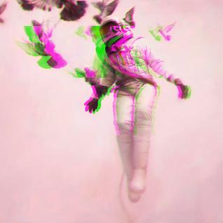 ὄρνις_λόγος ☞ Ornithology