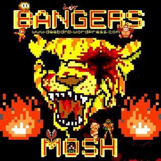 BANGERS & MOSH (CONTINUOUS DJ MIX)