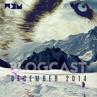 BLOGCAST | December 2014