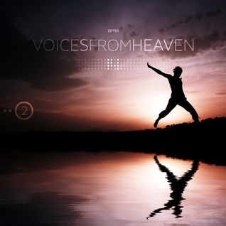Voices from Heaven volume 14 (Part 2)