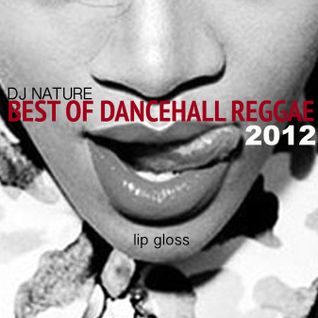 DJ NATURE // BEST OF DANCEHALL REGGAE 2012