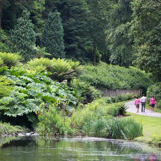 Promenade : Le conservatoire botanique national de Brest