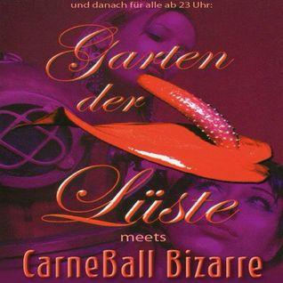 Live-Set@Garten der Lüste im KitKatClub (22.02.2014)