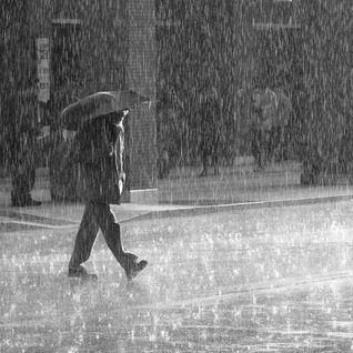NicholasM - Rainy Day
