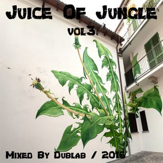 RaggaJungle Dnb Mix 2016 - Juice Of Jungle Vol3 By Dublab