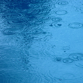 NCN - The Rain Show
