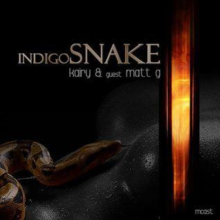 Indigo Snake 010 on MCast May 2014 part 2 guest - Matt G
