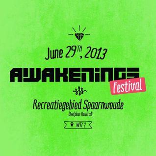 Adam Beyer - Live @ Awakenings Festival 2013 (Amsterdam) - 29.06.2013