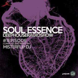 Soulful Essence | #1episode | Misterflip