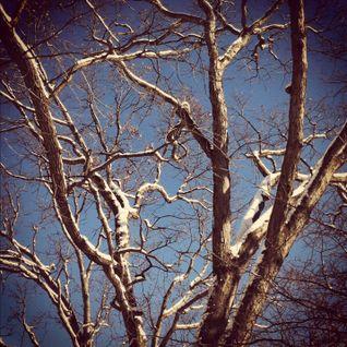 Mannie's Winter 2012 Mix
