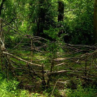 Abstract Softness - The Twig Boat [Dj Set]