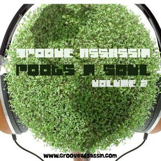 Groove Assassin Roots n Soulful Deep House Mix December 2011