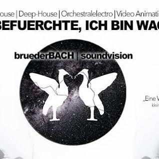 Elektrofil @ Ich Befuerchte Ich Bin Wach, 26.4.13 N8lounge, Bonn