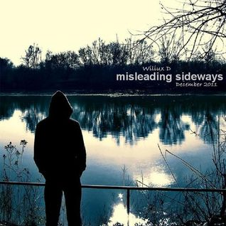 Wiliux D - Misleading Sideways (December 2011)