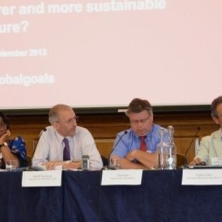 IDS and Beyond 2015 UK meeting on global goals - Speech by Chris Bain, Director, CAFOD