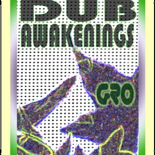 Dub Awakenings Show 53: NEW  YEARS DAY 2011