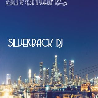 adventures in a night - silverback dj