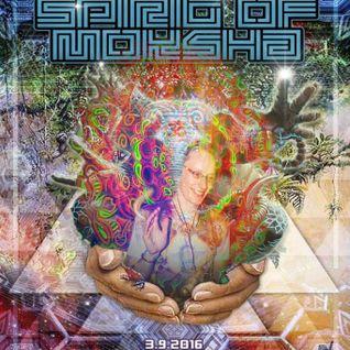 Spirit of Moksha XII Chillin Set I