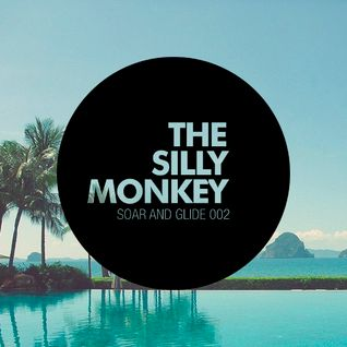 The Silly Monkey - Soar and Glide 002