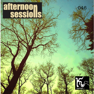 Afternoon Sessions 046