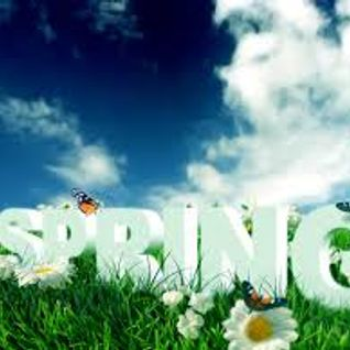 Paul Reynolds Spring Break April 2013