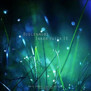 Diolenmobi - Inner Voice 9