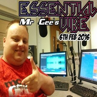Mr Gee's Essential Vibe (Repeat Playback) - 6th FEB 2016