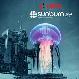 Rank 1 - Live @ Sunburn Festival (Noida, India) - 06.10.2013