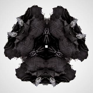 XYZ06 ~ Rorschach Test