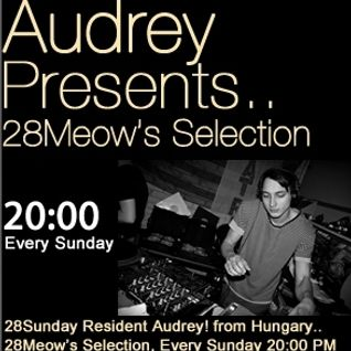 Erro guest mix to 28Meow's Selection on 28BLACK.FM