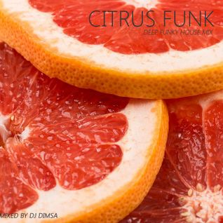 Citrus Funk - Deep Funky House Mix (2016)