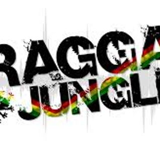 !!! Reggae Jungle Mix 2016 Riddim Up !!!