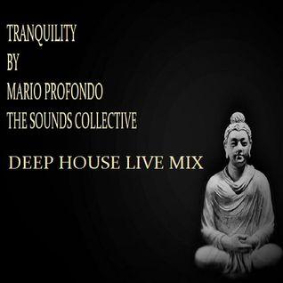 Mario Profondo The Sounds Collective Exclusive Mix