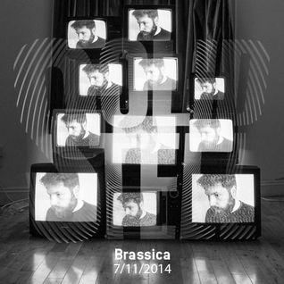 Solid Steel - Brassica Mix (Nov 2014)