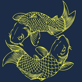 Wierd Fish