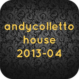 andycolletto house 2013-04
