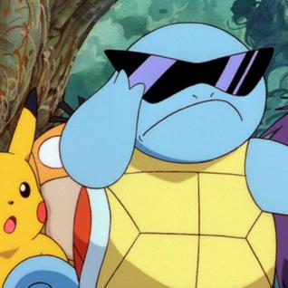 Turtle Swag