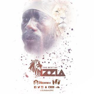 DJ ADAM 2MV Presents The BEST of SIZZLA