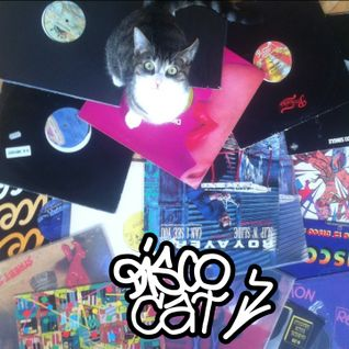 DISCO CAT vol.1