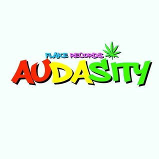 SHOTTA DJ - AUDASITY - FLAKE RECORDS - DRUM N BASS - 102