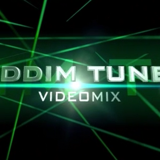 DJ SOLO - RIDDIM TUNES V-MIX VOL.7