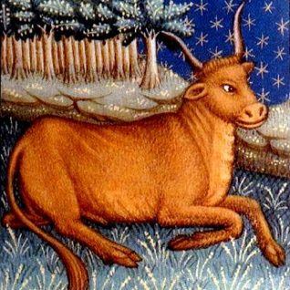 Poem for Taurus