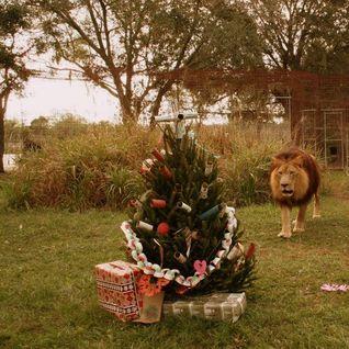 Sampleecious #54 (Christmas Mixtape)
