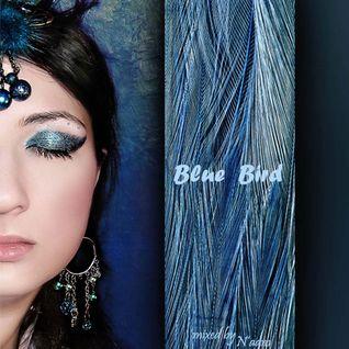N'aam - BlueBird