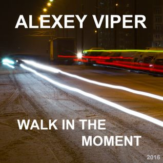 Alexey Viper - Walk In The Moment [Winter] Compilation 16.02.2016
