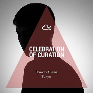 Celebration of Curation 2013 #Tokyo: Shinichi Osawa