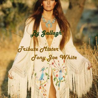 Spécial Mister Tony joe White By Gallagh'