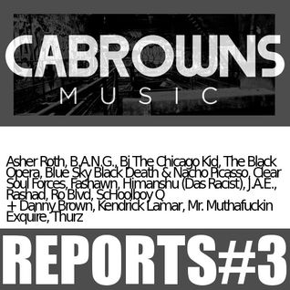 CABROWNS REPORTS#3