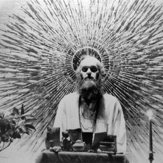 Parson - The Bees Made Honey in Ram Dass' Skull