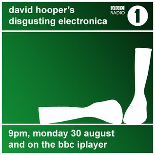 David Hooper's Disgusting Electronica - 30 Aug 10
